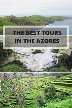 Azores- Portugal- How We Found Adventure In a Cup of Tea