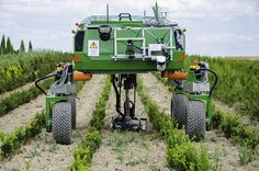 The new Bonirob robot is capable of distinguishing between weeds and crops by comparing them to images using machine learning.