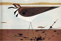 Kildeer serigraph by Charley Harper