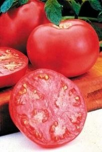 Pase Seeds - Old German Tomato Seeds, $3.49 (http://www.paseseeds.com/old-german-tomato-seeds/)