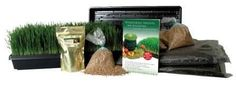 """Organic Wheatgrass Growing Kit - Grow & Juice Wheat Grass: Trays, Seed, Soil, Instructions & More by Wheatgrasskits.com. $34.95. Contains 5 1 lb. bags of wheat, 5 trays, 2 5 lb. bags soil, 1 azomite, Book : Wheatgrass, Sprouts, Microgreens and the Living Food Diet"""" by Living Whole Foods, Inc., Instructions"""