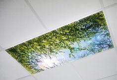 fluorescent light covers, $29.99