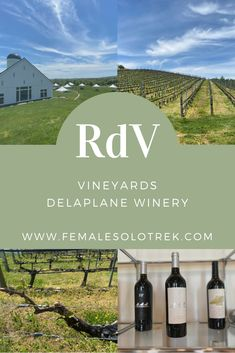 Delaplane Winery: Experiencing RdV Vineyards - FemaleSoloTrek Usa Travel Guide, Travel Usa, Travel Guides, Travel Tips, Amazing Destinations, Travel Destinations, America And Canada, South America, Virginia Wineries