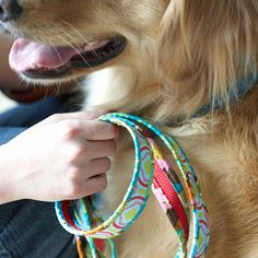 Cheap DIY to get dog collars and leashes that I love and that match!
