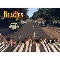 The Beagles ;-) (This is so cool. Who comes up with this stuff?)