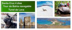 Galapagos Islands, Tours, Tour Guide, Travel, Santa Cruz, Guayaquil, Beaches, Hotels, Vacations