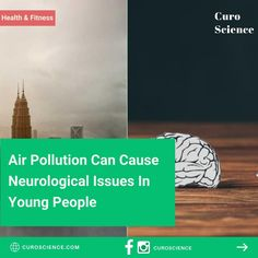 Signs Of Alzheimer's, Central Nervous System, 27 Years Old, Air Pollution, Alzheimers, Young People, Vulnerability, Psychology, Medicine