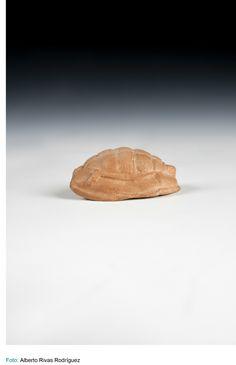 Museo Arqueológico Nacional-tortuga-500[ac]=401[ac]-Época Clásica-Atenas -S.O.R