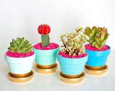 Faça você mesmo: dourado nos vasinhos de flores
