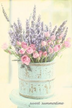 Spring is coming!! Yay my fave season! Here comes pretty flowers, lace, minty blue, floral patterns, soft colours, light pink, coral pink! I think I need to go shopping just to get some clothes.