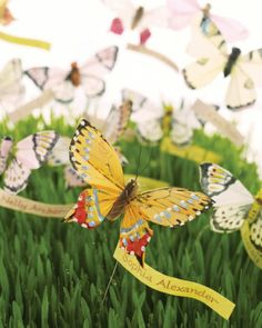 Garden of Escort Cards  A fresh lawn of wheatgrass makes a glorious field for butterflies to flutter about. Banners bearing guests' calligraphed names seem to billow in a gentle breeze. The butterfly wires are attached to skewers covered with floral tape.