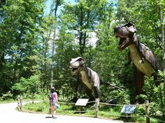 Kings Dominion theme park in Richmond, Virginia