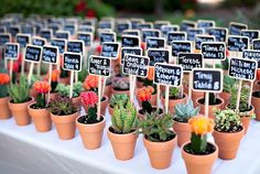 Pequeñas macetas donde colocar el nombre de los invitados y su mesa correspondiente en el banquete nupcial | ideas para boda campestre