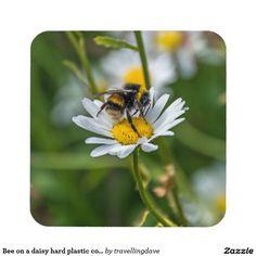 Bee on a daisy hard plastic coasters