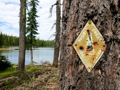 Where I went terribly wrong on the Pacific Crest Trail: Lessons of a thru-hiker.