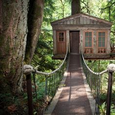 The world's 10 coolest treehouse hotels by Thrillist. My Favorite: TreeHouse Point in Issaquah, WA (http://www.treehousepoint.com/)