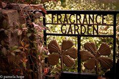 fragrance garden