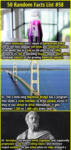 1. Most Americans aren't aware of blackcurrant flavor (one of the most popular soft drink and confection flavors in the world) due to a ban on the plant in the 1900s because of its role in spreading disease among white pines, a principle industry of the growing American republic. 2. The 5-mile-long Mackinac Bridge has a program that sends a crew member to drive people across if they're too afraid to drive themselves. It gets between 1,200 to 1,400 calls every year.