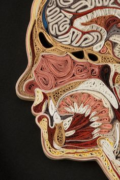 Paper Body Tissue - Artist Lisa Nilsson has made a series of pieces based on human anatomy entirely out of paper, really like these.