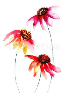 Image of 'Colorful watercolor illustration with beautiful flowers'