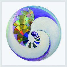Espiral centrifuga  Serie ensambles