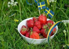 Blog - Diyetgen - Türkiye'nin Sağlıklı Beslenme Platformu Strawberry, Alcohol, App, Fruit, Semester, Blog, Instagram, Inspiration, Strawberries