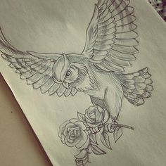 Quick sketch... Gonna work on this one today :) #owltattoo #tattoo #owl #roses…