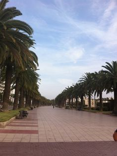 I love the beautiful palm trees, blue sea, gorgeous weather and great atmosphere. #Salou #CostaDorada #Medplaya http://www.medplaya.com/hotels/hotel-calypso-salou.html