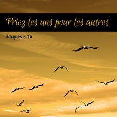 Nouveau Testament: Épître de saint Jacques