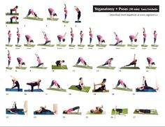 psoas sequence. So need this!!                                                                                                                                                     Mehr