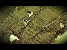 The Only Library Ever Recovered from Antiquity: The 1800 Scrolls of Herculaneum | Ancient Origins