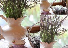 My Cozy Corner: Lavender Tea for One
