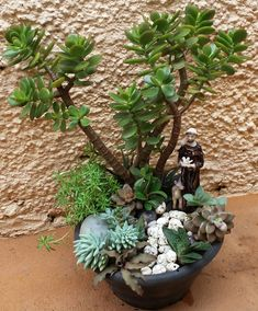 Resultado de imagem para mini jardim de suculentas