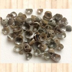 Unique fancy rough diamond caps/shells drilled. Ready to use to give the raw edgy feel to your designs. Shop these at Gemsforjewels - great deals / Flat 55% off store wide!