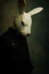 Mask. Rabbit.