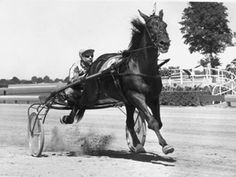 Nevele Pride with Stanley Dancer, winning the 1968 Hambletonian. Nevele Pride won 57 races, and on August 31, 1969, broke Greyhound's 1938 trotting world record for the mile. the son of Star's Pride won the Trotting Triple Crown and was three times named Harness Horse of the Year. He stood at Stoner Creek Stud near Paris, Kentucky, having been syndicated for a record $ 3-million in 1969. He died February 19, 1993 and is buried at Stoner Creek near Thoroughbred Triple Crown winner Count…