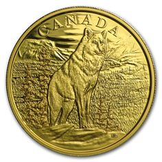 Canada 350 Dollars Gold Coin 2015 Alpha Wolf This striking design conveys the strength and beauty of the wolf as a fearless hunter th. Buy Gold And Silver, Mint Gold, Bullion Coins, Gold Bullion, Canadian Gold Coins, Arctic Polar Bears, Canadian Animals, Alpha Wolf, Coin Art