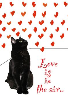 Valentine Cat Card- Black Cat Red Hearts and Love.