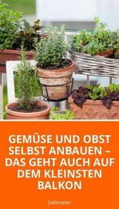 Garden Types Kleiner Balkongarten: Gemüse anpflanzen #garden #gardentypes #gardening #yard