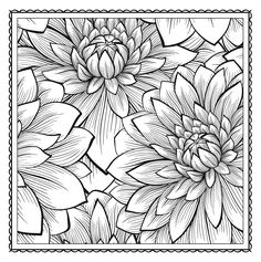 Blossom Magic: Beautiful Floral Patterns Coloring Book for Adults (Color Magic): ArsEdition: 9781438007311: Amazon.com: Books