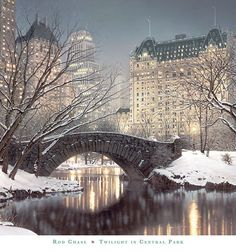 Winter twilight in Central Park, NYC