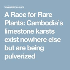 A Race for Rare Plants: Cambodia's limestone karsts exist nowhere else but are being pulverized Rare Plants, Geology, Cambodia, Flora, Environment, Racing, Plants, Lace, Earth Science