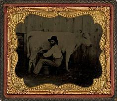 ca. 1860's, [ambrotype portrait of a gentleman milking his Guernsey cow]  via Cowan's Auctions