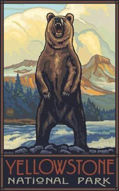 www.theparksco.com: YELLOWSTONE NP - GRIZZLY BEAR STANDING - 11 X 17 POSTER