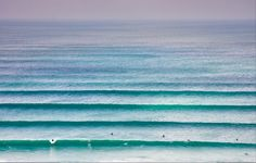 ishootsurfers:that's a lotta lines and not a whole lotta surfers