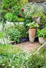 cottage garden using containers - Yahoo Image Search Results