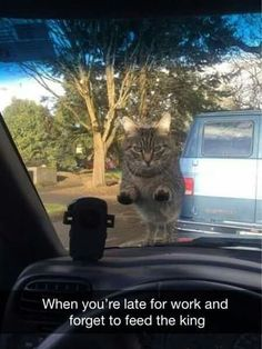Hey! Where do ya think you're goin'?