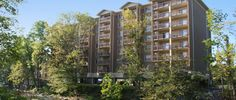 Cedar Lodge Condominiums on the River
