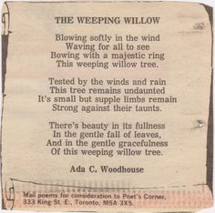 The Weeping Willow<3