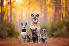 Family by Kaylee Greer on 500px